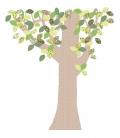 Papel Pintado Árbol-mitad Chulakids